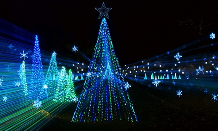 Weekday or Weekend Illumination Light Show at At Jellystone Park Larkspur(Up to 50% Off)