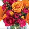 Half Off at Amling's Flowers