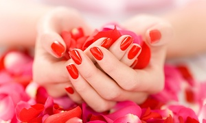 Marias Nails and Waxing: Spa Manicure, Spa Pedicure, or Spa Mani-Pedi at Marias Nails and Waxing (Up to 53% Off)
