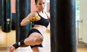Jungle Gym Martial Arts New Rochelle: 12 or 24 MMA or Fighterella Classes with Private Lessons at Jungle Gym Martial Arts New Rochelle (Up to 94% Off)