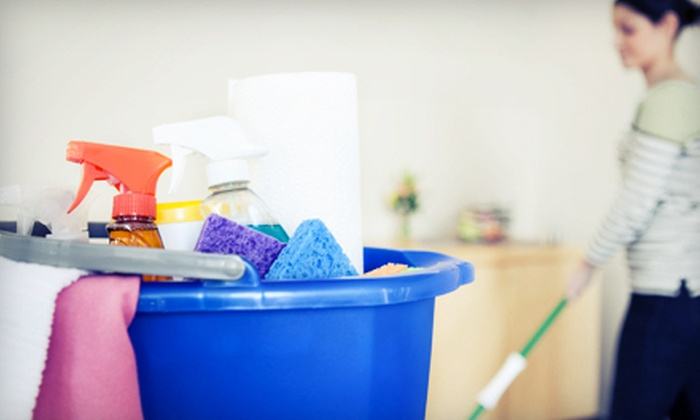 Diane with Two Ladies and a Bucket - Augusta: Two or Four Hours of Housecleaning Services from Diane with Two Ladies and a Bucket (Up to 71% Off)