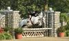 Prairie Star Farm - North Barrington: $90 for Three 45-Minute Private Horseback-Riding Lessons at Prairie Star Farm ($180 Value)