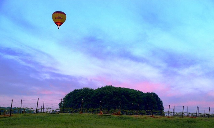 Grand Traverse Balloons - Grand Rapids: Group Sunrise Balloon Ride for Two from Grand Traverse Balloons (Up to 46% Off)