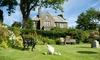 Ashmount Country House - Haworth: Yorkshire Dales: Up to 3 Nights for Two with Breakfast and Prosecco on Arrival at 5* Ashmount Country House