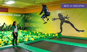 Rockin Jump - Mount Kisco: Trampoline Park Jump Sessions for Two or Four at Rockin' Jump - Mt. Kisco (Up to 43% Off).