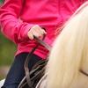 58% Off Horseback-Riding Lessons in North Salem