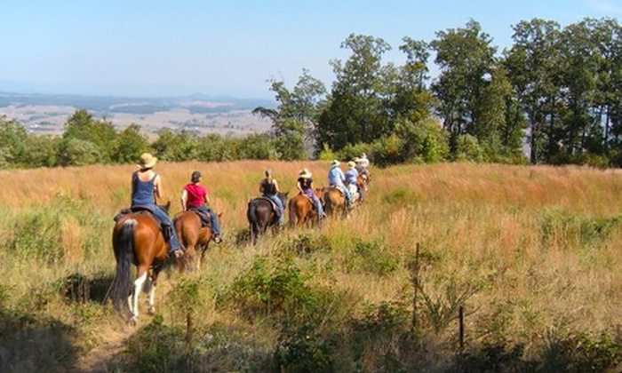 North Mountain Outfitter - Pastures: Half-Day Horseback Trail-Ride with Lunch for One or Two from North Mountain Outfitter (Up to 54% Off)