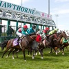 Hawthorne Race Course – Up to 59% Off Race-Day Package