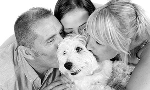 Lawson Wright Studios: £9 for a Studio Pet Photoshoot at Lawson Wright Studios