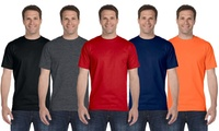 10-Pack Gildan Men's T-Shirt Assorted Bundle