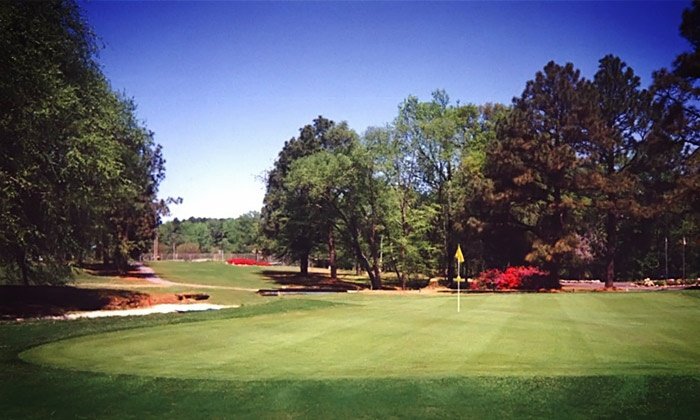 Willow Springs Country Club - Wilson: Three-Month Membership or 18 Holes with Cart for One or Four at Willow Springs Country Club (Up to 56% Off)