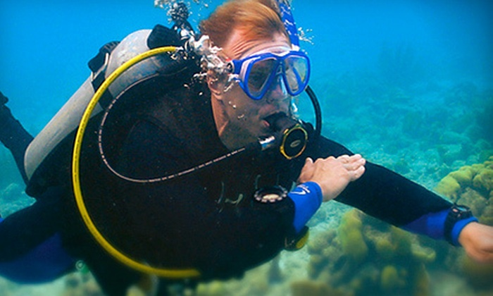Caribbean Dreams Diving - Calgary: $188 for a PADI Open Water Diver Certification Course with Four Dives at Caribbean Dreams Diving ($375 Value)