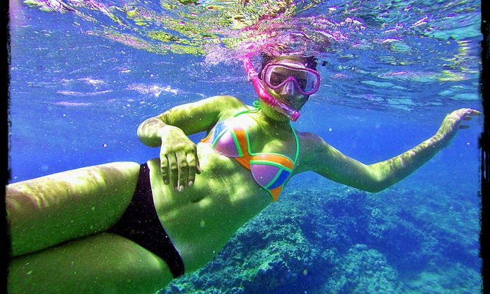 Aquatic Artistry, LLC - Multiple Locations: Up to 74% Off Snorkeling Tour at Aquatic Artistry, LLC