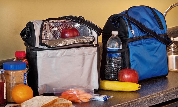 Insulated Lunch Bag for Hot or Cold Food: $6.99 for an Insulated Dual Lunch Bag in Gray or Royal Blue ($17.09 List Price). Free Returns.