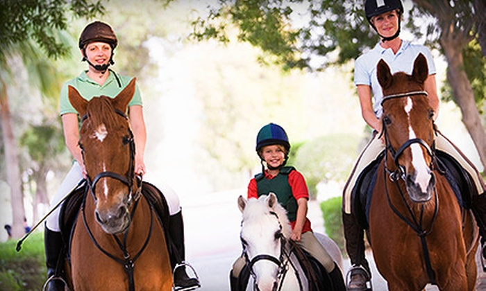 Hylee Training - Mission: Two, Four or Six Private Horseback-Riding Lessons for One Person at Hylee Training (Up to 58% Off)
