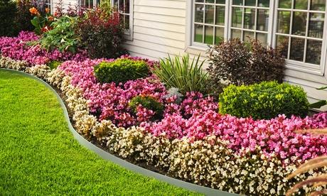 5, 10, 15 ou 20 bordurettes en métal pour jardin et terrasse
