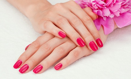 Auckland Nail Salons: Up to 70% off Nail Salons in Auckland