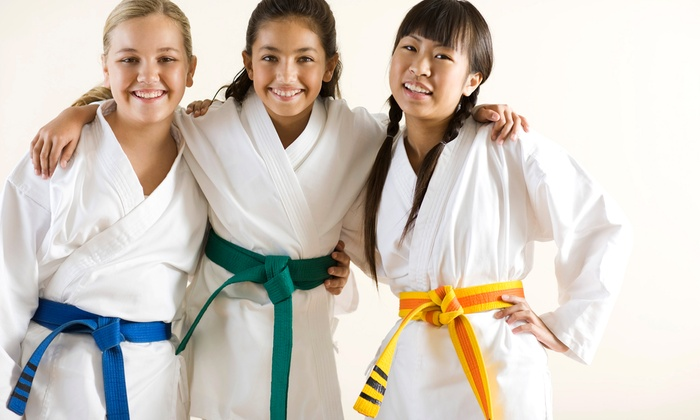 Tien Lung Taekwon-Do Club - Multiple Locations: C$39 for Two Months of Beginner Tae Kwon Do Classes at Tien Lung Taekwon-Do Club (C$89.99 Value). Eight Options Available.