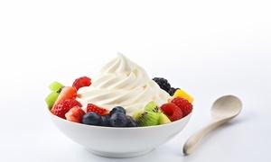 The Yogurt Experience: Frozen Yogurt at The Yogurt Experience (Up to 40% Off)