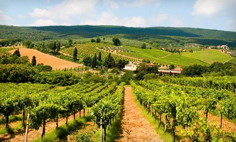 Cooking Classes and Wine Tour in Northern Italy