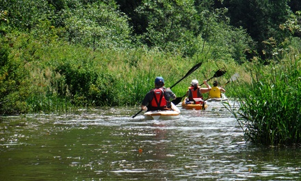 Kayak and Walking Tour of Miami River and the Spirit Trail for One or Up to Six from Harrison Eco Tours (51% Off)