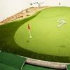 69% Off One-Week Golf-Instruction Membership