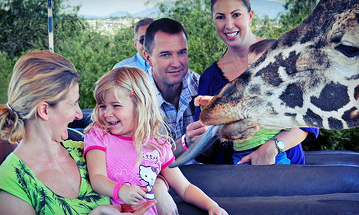Out of Africa Wildlife Park - Camp Verde: $18 for Visit for One Adult to Out of Africa Wildlife Park (Up to $36 Value)