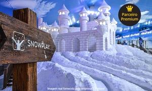 Snowland: Snowland: ingresso adulto ou infantil (de dia de semana ou fim de semana)