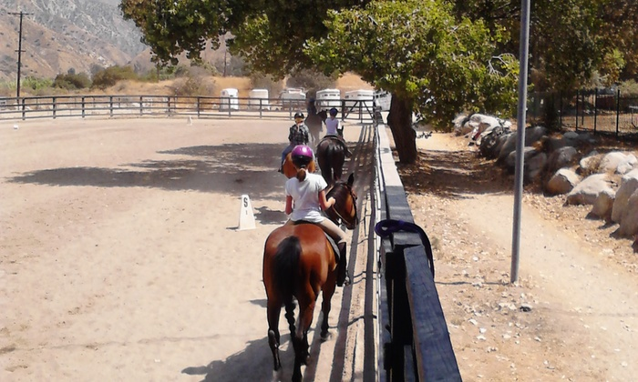 Lets Ride Equestrian Therapy Program - Los Angeles: $301 for $350 Groupon — Let's Ride