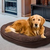 Van Ness Beautiful Dreamer Pet Beds