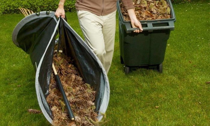 Leaf Loader Yard Clearing Tools Groupon Goods