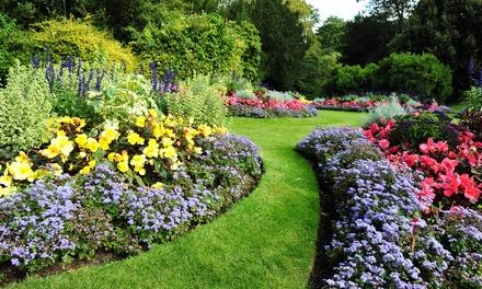 Online-Kurs Gartengestaltung, optional mit Fernlehrerbetreuung, bei Laudius (bis zu 93% sparen*)