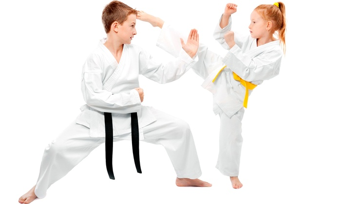 Pro Dojos - Barrie: C$19 for 10 Martial-Arts Classes at Pro Dojos (Up to C$150 Value)