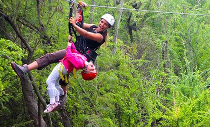 Full-Day Ziplining and Snorkeling Tour from Aloha Zipline Snorkeling Tour (Up to 42% Off). 6 Options Available.