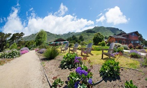 Big Sur Resort with Views of Pacific Ocean at Ragged Point Inn and Resort, plus 9.0% Cash Back from Ebates.
