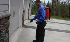 A&R Pest Solutions: $109 for $199 Worth of Pest-Control Services — A&R Pest Solutions