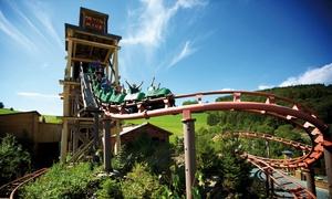 FORT FUN Abenteuerland - Dein Freiheitpark: Tageskarte für einen Erwachsenen oder Jugendlichen für das FORT FUN Abenteuerland - Dein Freiheitpark (31% sparen*)