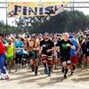 46% Off 5K Run with Tacos and Beer