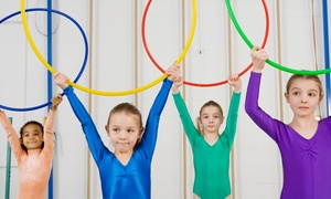 Top Notch Training Center: Four-Week Gymnastics Course at Top Notch Training Center (47% Off). Four Options Available.