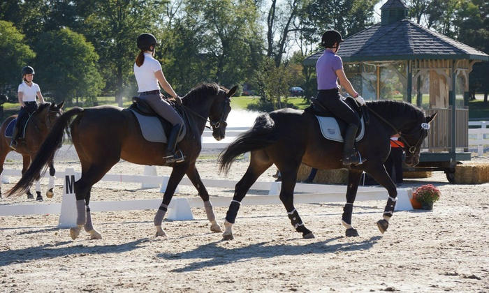 Essential Equestrian, Llc - Salem: $25 for $40 Worth of Horseback Riding — Essential Equestrian, LLC