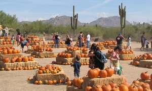 MacDonald Ranch: Fall-Festival Admission for Two, Three, or Four at Macdonald Ranch (Up to 33% Off); October 1st - 31st