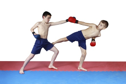 $35 for $100 Groupon — Punta Gorda Martial Arts