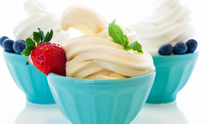 Fresh & Frosty - Levittown: Frozen Yogurt and Salad-Bar Food at Fresh & Frosty (Up to 52% Off). Two Options Available.