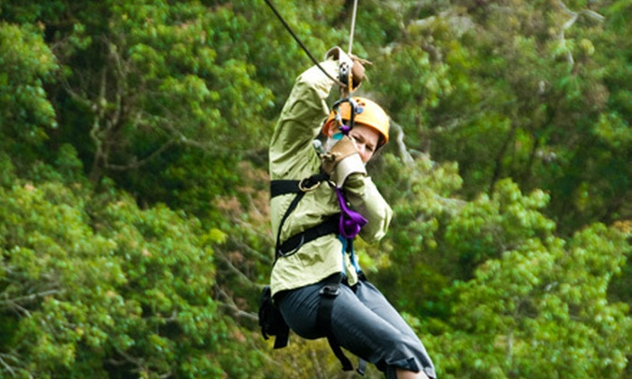 High Point Catering - Clarksburg: Three-Hour Adventure for One or Two with Zipline, Climbing Wall, and Barbecue at High Point Catering (Up to 55% Off)