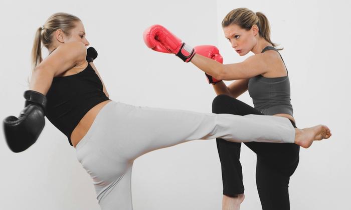 Pinellas Krav Maga - Largo: Ten Krav Maga or Kickboxing Classes or One Month of Unlimited Classes at Pinellas Krav Maga (Up to 77% Off)