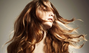 Moda Forte Boutique & Salon: Haircut and Style with Optional Partial or Full Color at Moda Forte Boutique & Salon (Up to 63% Off)