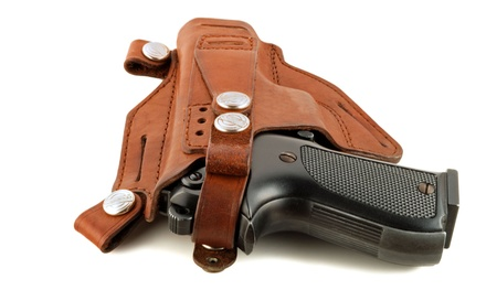 $59 for Concealed-Handgun Class with Gun Rental and Ammo from Harris County CHL ($124 Value)