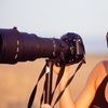 70% Off an Outdoor Photo Shoot at Up to Two On-site Locations