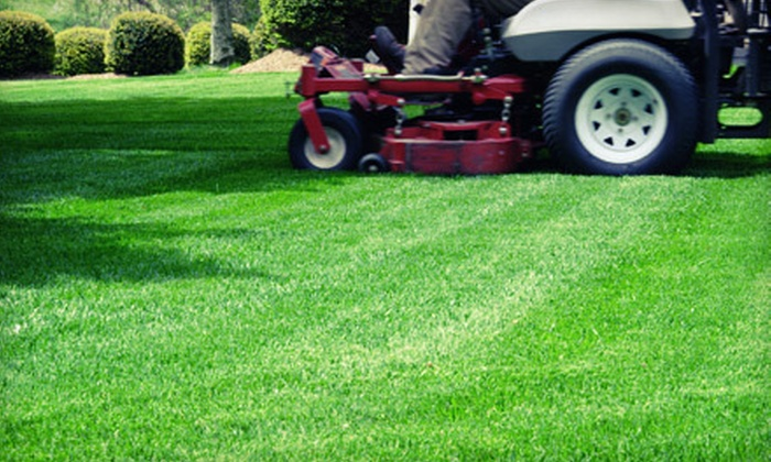 Green Thumb Organic Lawn Care - Mechanicsville: Soil Analysis With Option of an Organic Nutrient Application from Green Thumb Organic Lawn Care (Up to 66% Off)