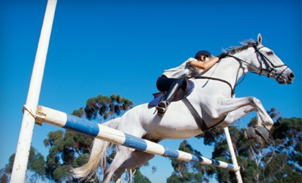 One 30-Minute Private Horse-Riding Lesson (a $35 value) - Creekside Acres in Harvard